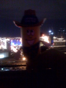 On The Rooftop of the Rio Casino in Vegas at the VooDoo Lounge